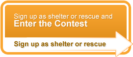 Sign up as shelter or rescue and enter the contest. Sign up as shelter or rescue.